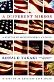 「A Different Mirror」のサムネイル画像