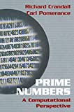 Prime Numbers: A Computational Perspectives