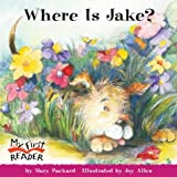 Where is Jake? 39語