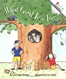 What Good is a Tree? 95語