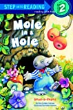 Mole in a Hole 390語