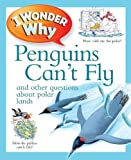 「I Wonder Why Penguins Can't Fly」のサムネイル画像