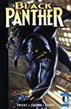 Black Panther: The Client (Marvel Knights)