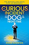 「The Curious Incident of the Dog in the Night-Time: (Broadway Tie-in Edition) (Vintage Contemporaries...」のサムネイル画像