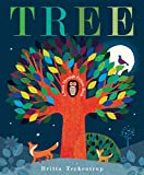 「Tree: A Peek-Through Picture Book」のサムネイル画像