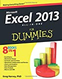 「Excel 2013 All-in-One For Dummies」のサムネイル画像