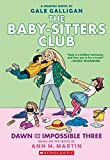 「The Baby-Sitters Club 5: Dawn and the Impossible Three」のサムネイル画像