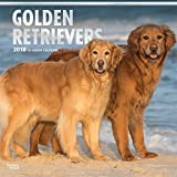 「Golden Retrievers 2018 Calendar」のサムネイル画像