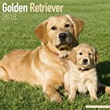 「Golden Retriever Calendar 2018 (Square)」のサムネイル画像