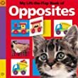 My Lift the Flap Book of Opposites (Pancake Lift the Flap)