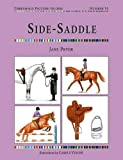 Side Saddle (Threshold Picture Guide)