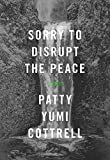 「Sorry to Disrupt the Peace」のサムネイル画像