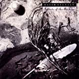 Secrets of the Beehive [from US] [Import]/David Sylvian