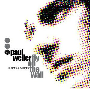 Fly on the Wall: B Sides & ... [12 inch Analog]