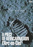 「A PIECE OF REINCARNATION [DVD]」のサムネイル画像