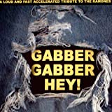 Gabber Gabber Hey!: A Loud And Fastpaced Tribute To The Ramones