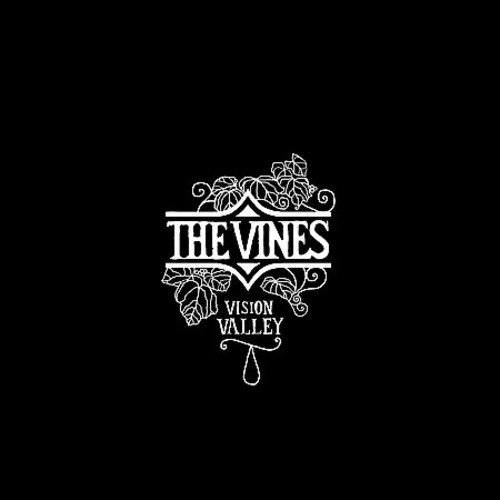 The Vines/Vision Valley