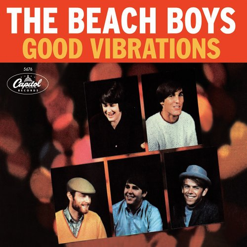 『Good Vibrations: 40th Anniversary Edition』 Open Amazon.co.jp