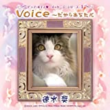 Pure Voice ~だからあなたに 速水奨