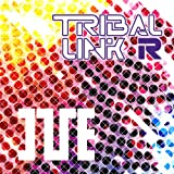 「TRIBAL LINK-R」のサムネイル画像