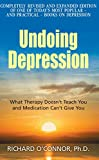 「Undoing Depression: What Therapy Doesn't Teach You and Medication Can't Give You」のサムネイル画像