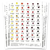 「Daniel Smith Watercolor 238 Dot Color Chart by Daniel Smith」のサムネイル画像