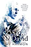 「The Song of David (The Law of Moses Book 2) (English Edition)」のサムネイル画像