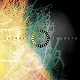 「Animals As Leaders」のサムネイル画像
