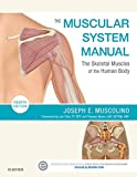 「The Muscular System Manual - E-Book: The Skeletal Muscles of the Human Body (English Edition)」のサムネイル画像