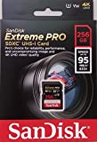 「SanDisk サンディスク SDXCカード 256GB Extreme PRO Class10 UHS-I対応 (最大読出速度95MB/s:最大書込速度90MB/s) SDSDXXG-256G-GN...」のサムネイル画像