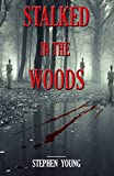 「STALKED IN THE WOODS: True Stories of Unexplained Disappearances and Strange Encounters in the woods...」のサムネイル画像