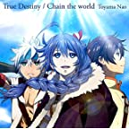 True Destiny/Chain the world(アニメ盤)