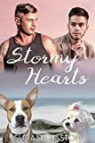 Stormy Hearts (English Edition)