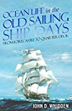 「Ocean Life in the Old Sailing Ship Days (English Edition)」のサムネイル画像