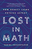「Lost in Math: How Beauty Leads Physics Astray (English Edition)」のサムネイル画像