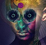 「The Insulated World(通常盤)」のサムネイル画像