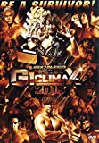 「G1 CLIMAX2018 [DVD]」のサムネイル画像